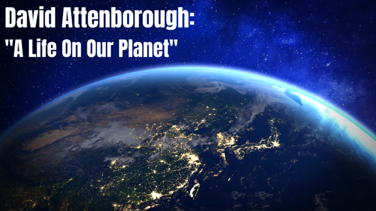 """10 Things We Learner From David Attenborough's Documentary """"A Life On Our Planet"""""""